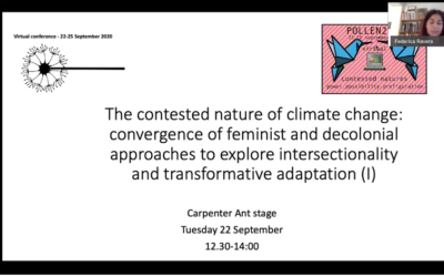 We organized two panels on feminist approaches to climate change within POLLEN 2020